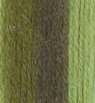 746 Verdes