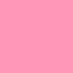 03 Rosa BB